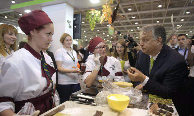 Orbán: Youth must have access to useful professions