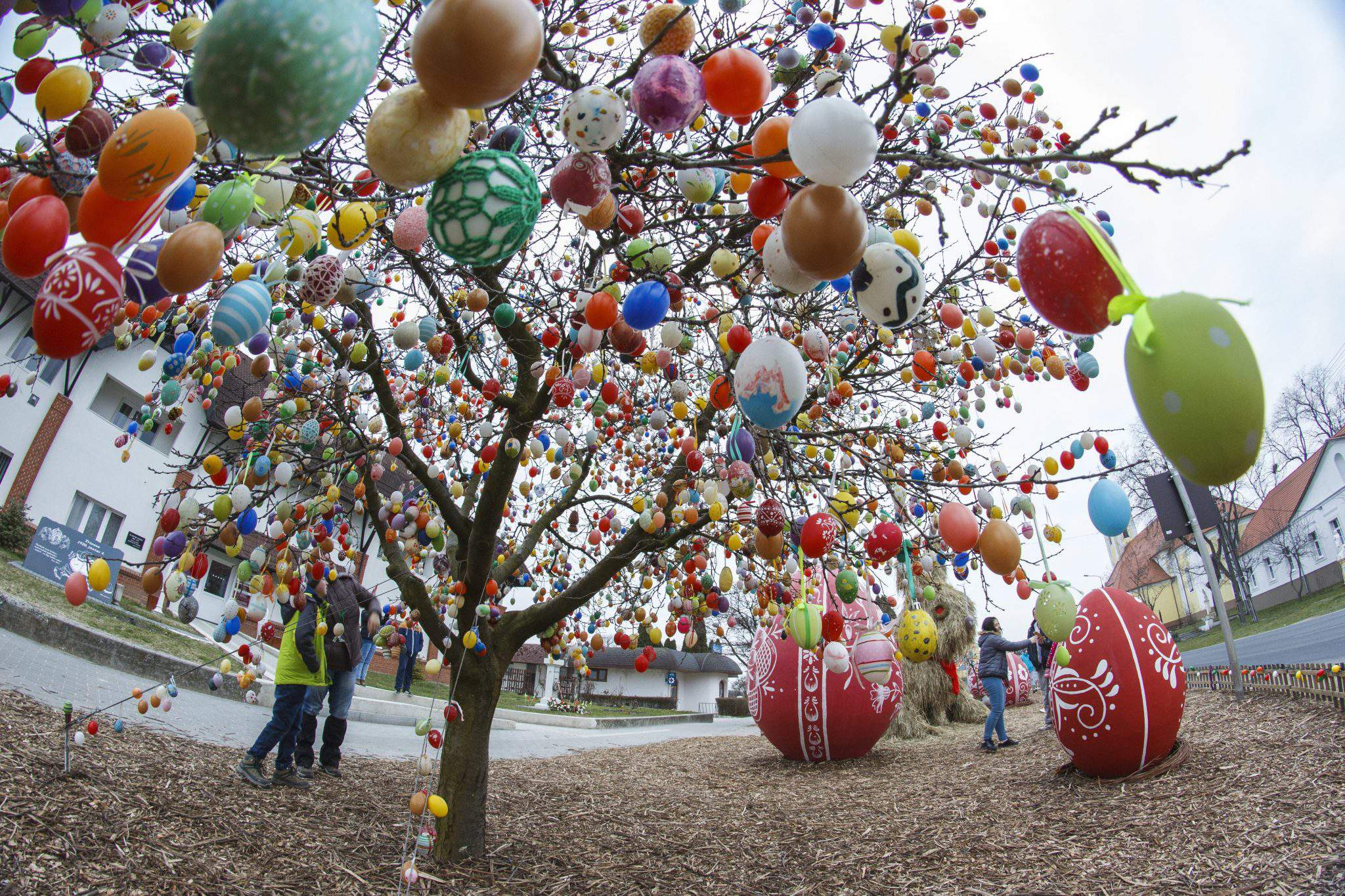 egg tree hungary easter