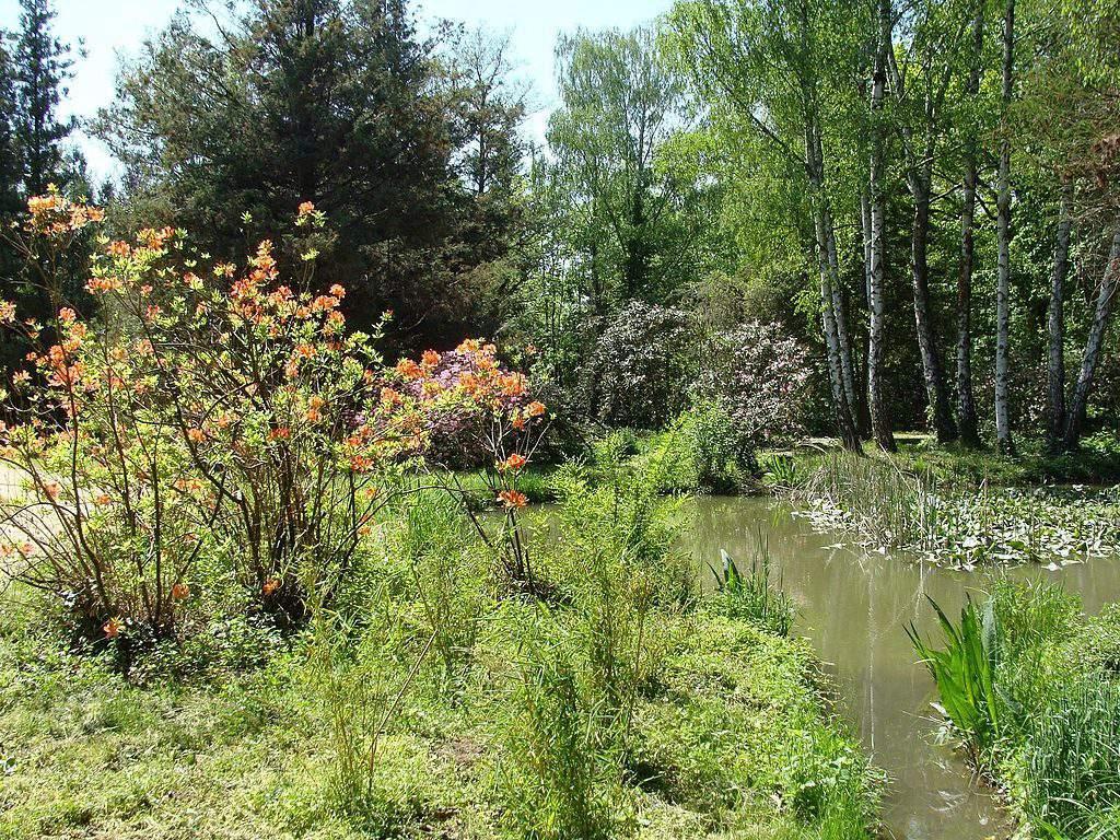 arboretum Szombathely