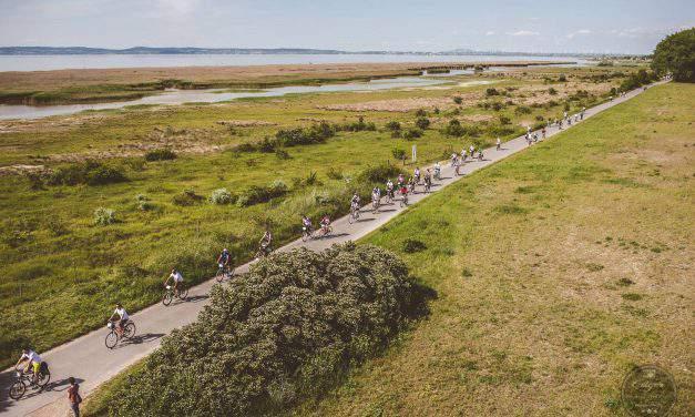 Amazing cycling tour around Lake Fertő along the Hungarian-Austrian border