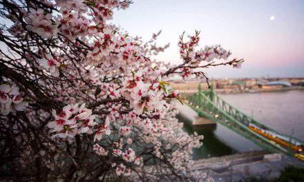 Russian art focus of Budapest Spring Festival