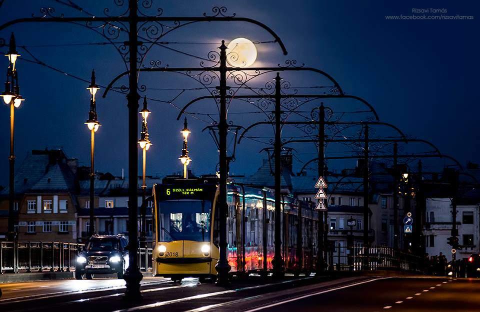 rizsavi7 tram budapest night photography