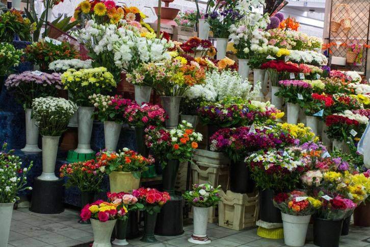 budapest market flowers buda