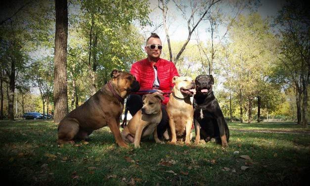 First Hungarian dog wins at Majorca dog show