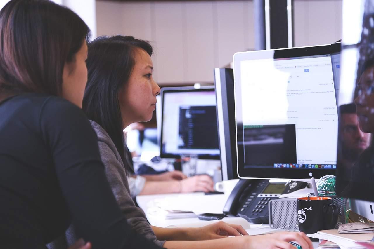 student job startup