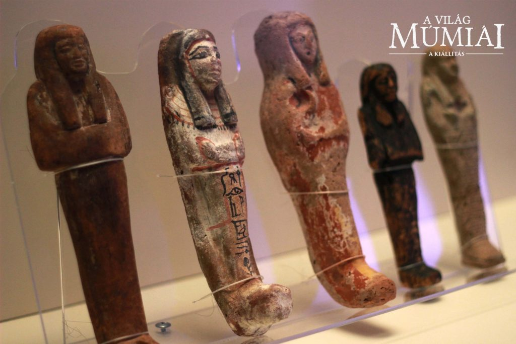 Mummies of the World Exhibition
