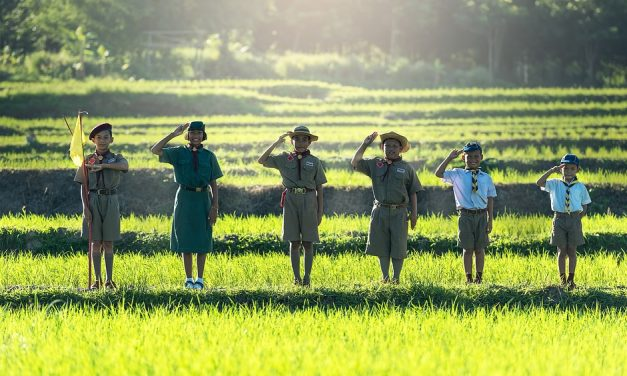 Gypsy children cannot become scouts in Hungary