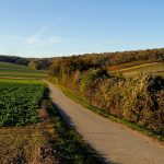 Hungary, Burgenland sign declaration on infrastructure, cultural cooperation