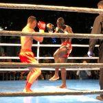 kickbox competition Dunaújváros