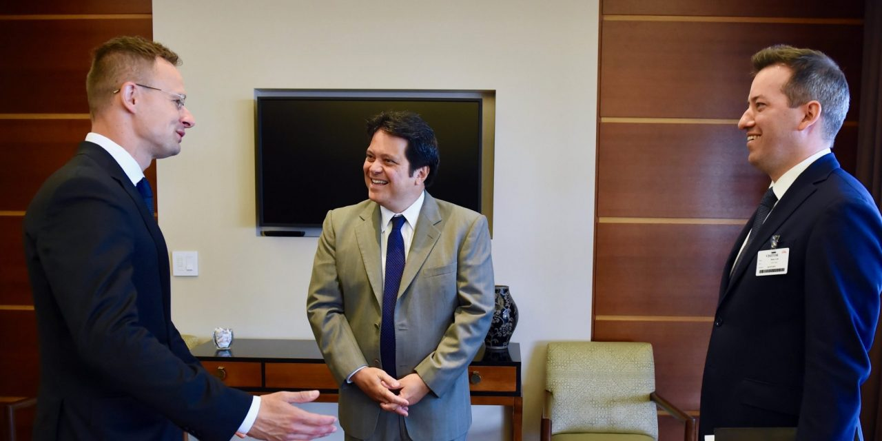 Foreign minister: Hungary, Indiana cooperation driven by car manufacturing, water management
