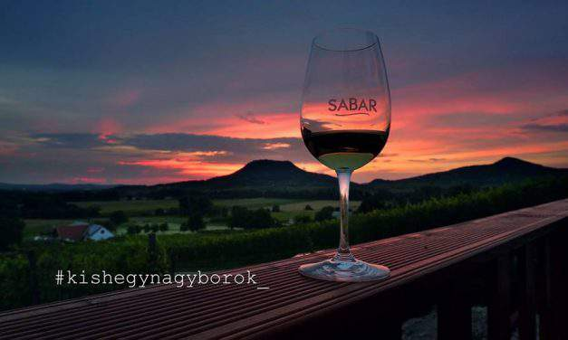 These are the best wines from the Balaton wine region