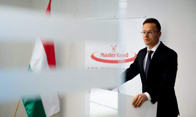 Master Good plans EUR 46.3m capacity expansion