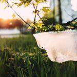 plastic bag environment