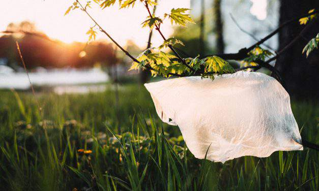 Government to raise plastic bag product fee from 2019, plans ban from 2021