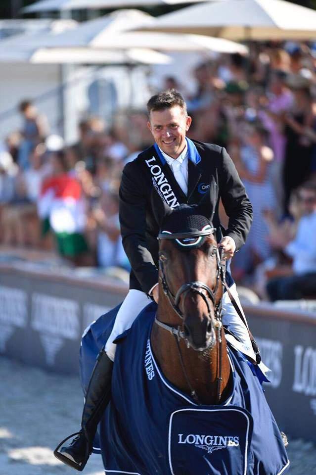 Hungarian wonder horse