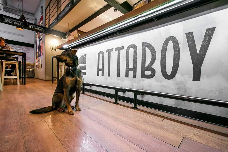 Dog-friendly restaurants in Budapest – PART 1