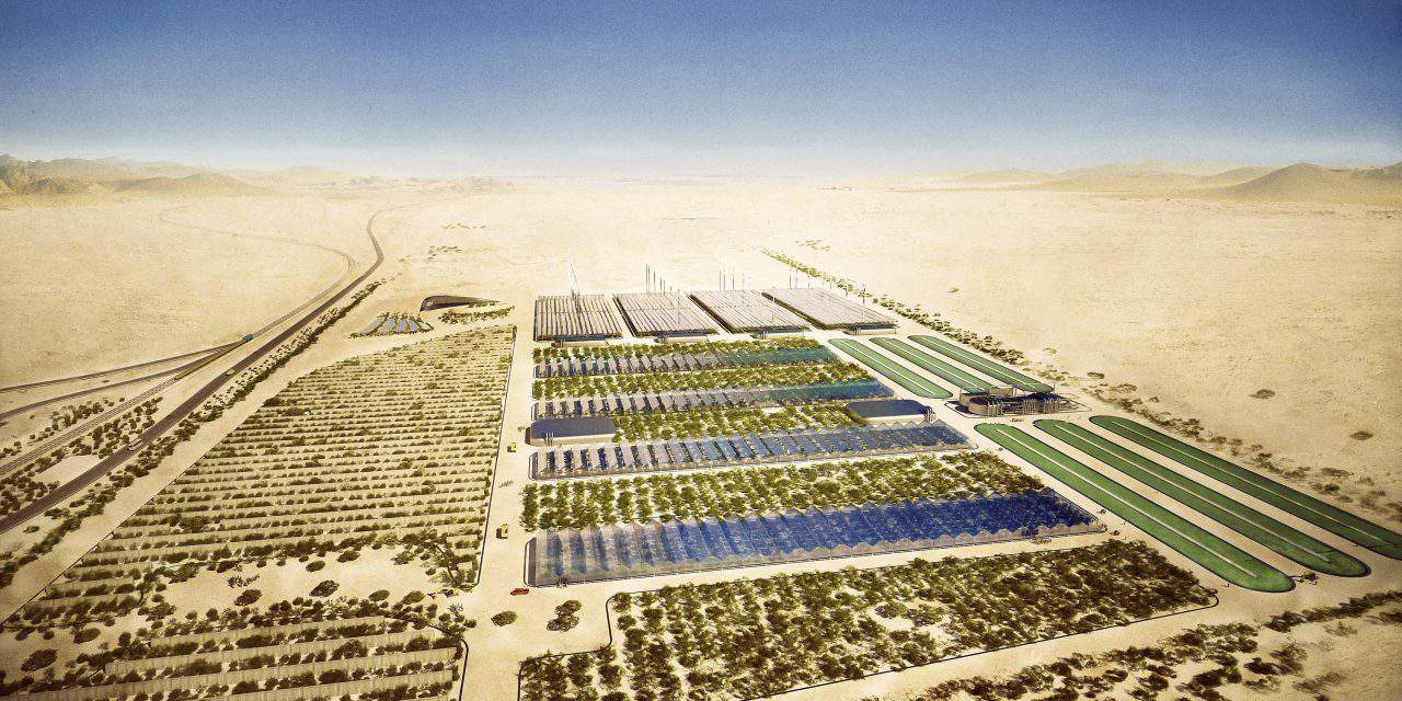Greening the desert and Moroccan-Hungarian model of progressive climate protection
