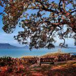 Lake Balaton Badacsony