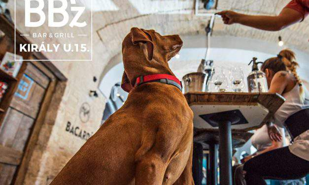 Dog-friendly restaurants in Budapest – PART 2