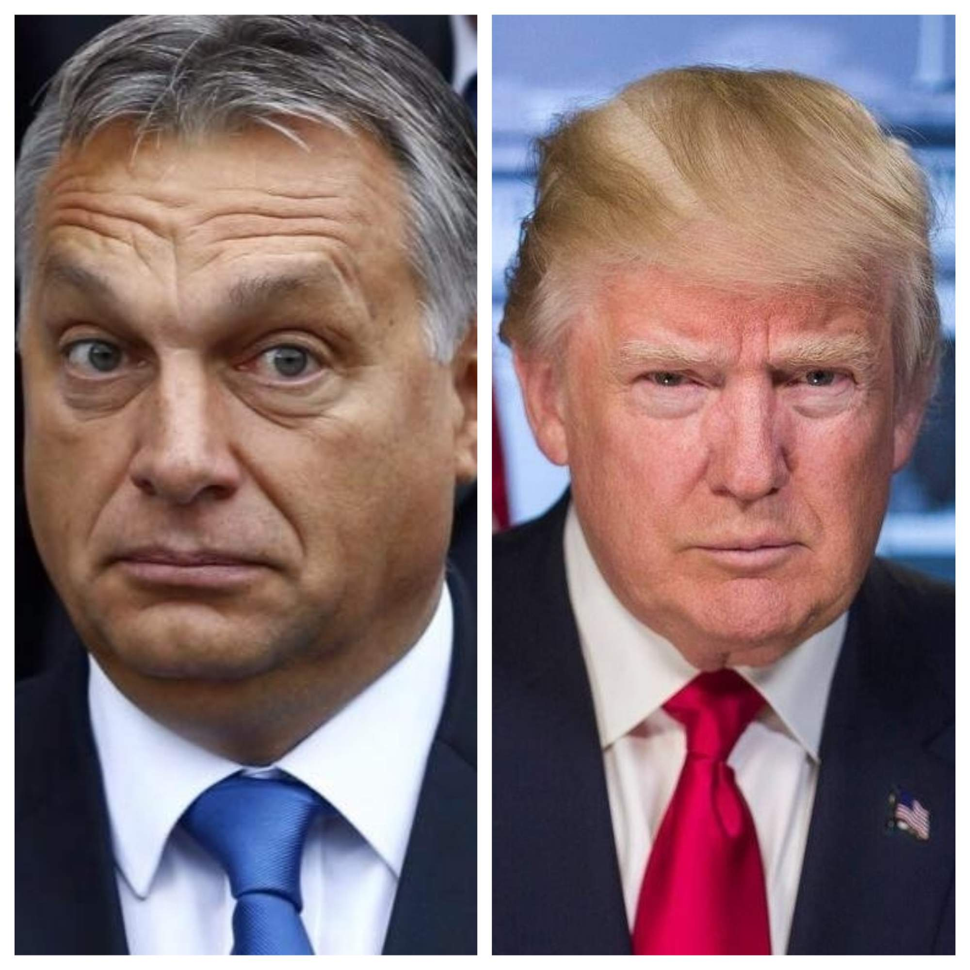 Orban Trump