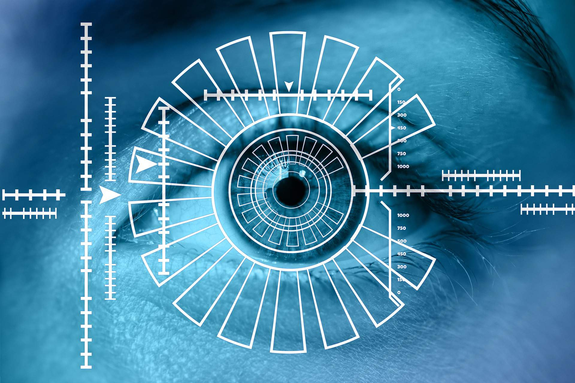 Biometric Data Iris Scan