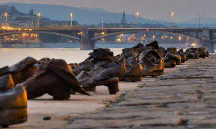 Jewish federation: Halt search for Holocaust victims' Danube remains