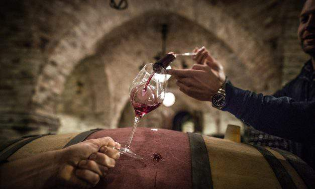 Land of wine: The best sommeliers of Hungary
