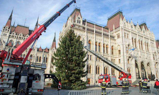 Hungary's Christmas tree can be seen at Kossuth Square
