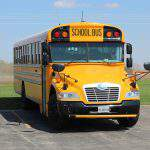 school bus, bus, transport