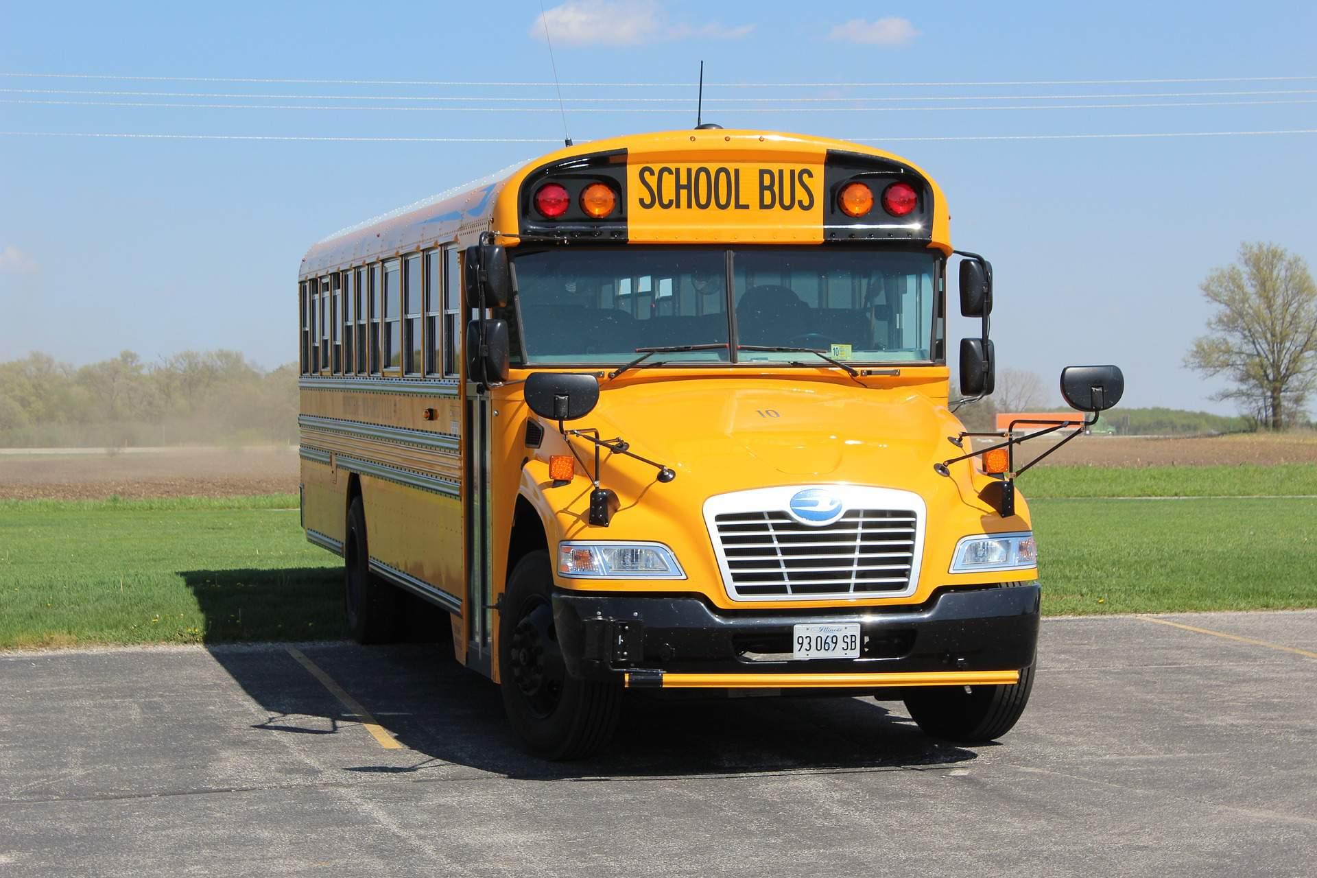 school bus, bus, transport