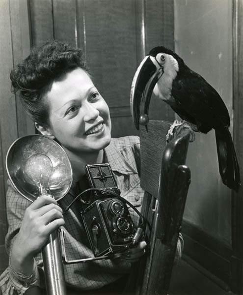 Ylla, photo, photographer, animal, bird
