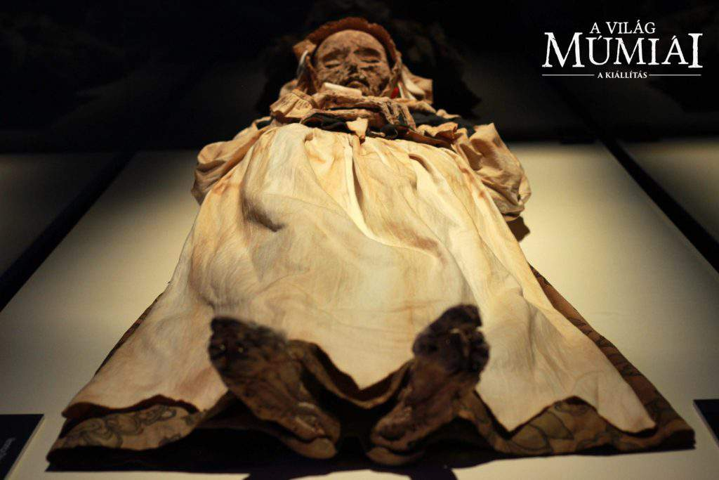 mummy, exhibition