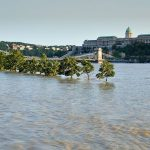 flood of Buda