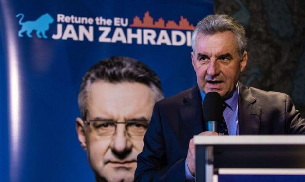 Fidesz would fit better in the European Conservatives and Reformists group, says Zahradil