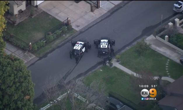 Hungarian man shooting in Los Angeles then turning gun on himself