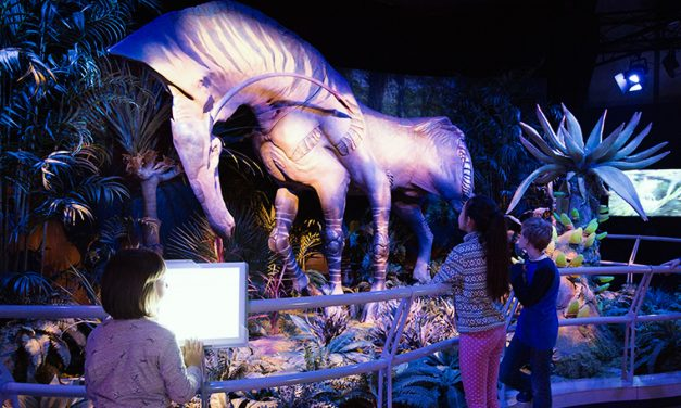 Interactive Avatar exhibition opened in Budapest!