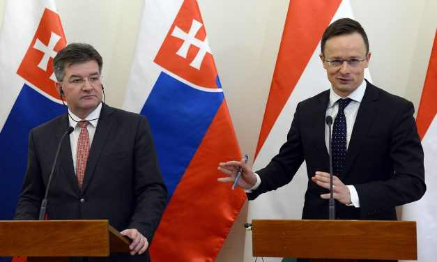 Foreign ministers confirm Hungarian-Slovak alliance