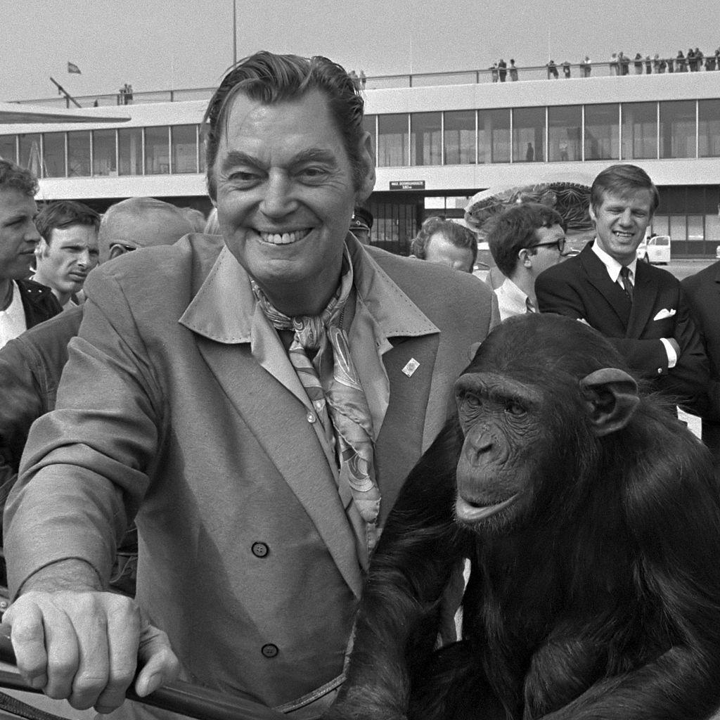 Weissmuller, monkey, chimpanzee, airport, actor