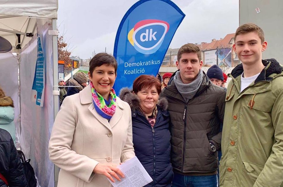 dobrev klára democratic coalition ep election 2019