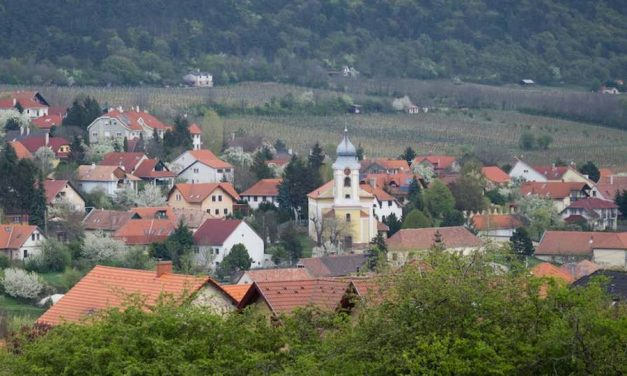 First tenders for Hungarian village funding scheme called