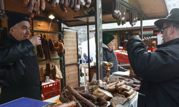 On this weekend: Mangalica festival in Budapest
