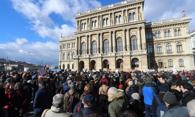 Hungarian science academy board requests talks on research institutes