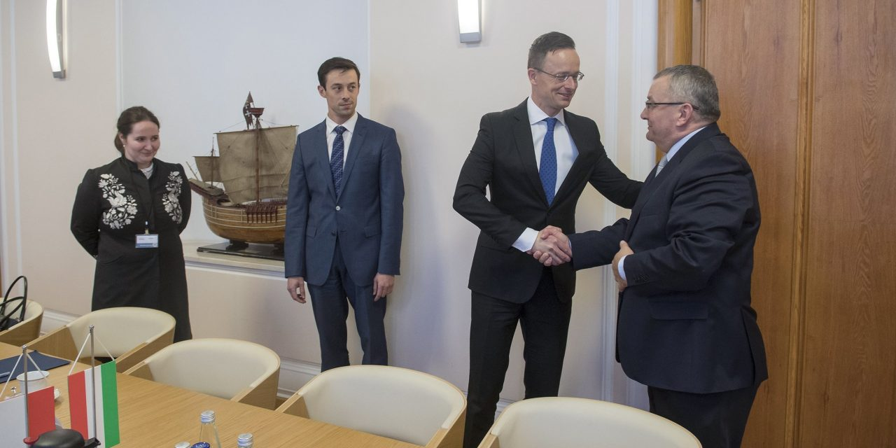 CEE countries expect fair, balanced approach to Israel, says foreign minister
