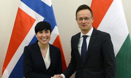 Foreign minister: Norway key partner in defence, energy