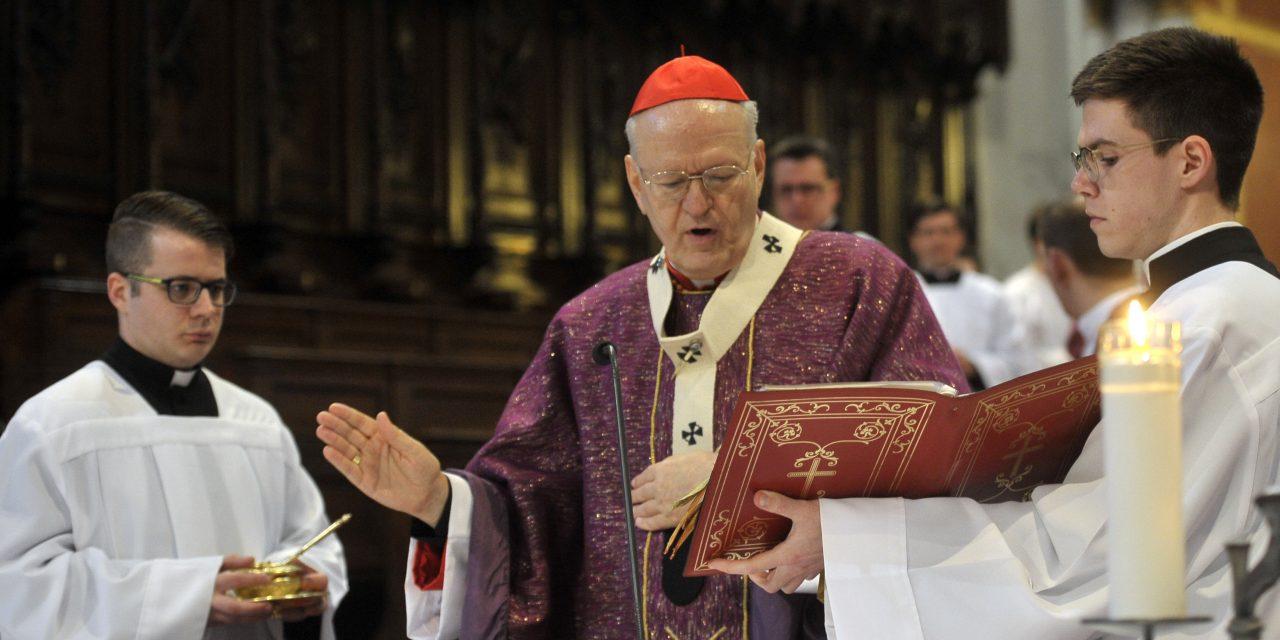 Cardinal Erdő presents IEC2020 programme in Rome