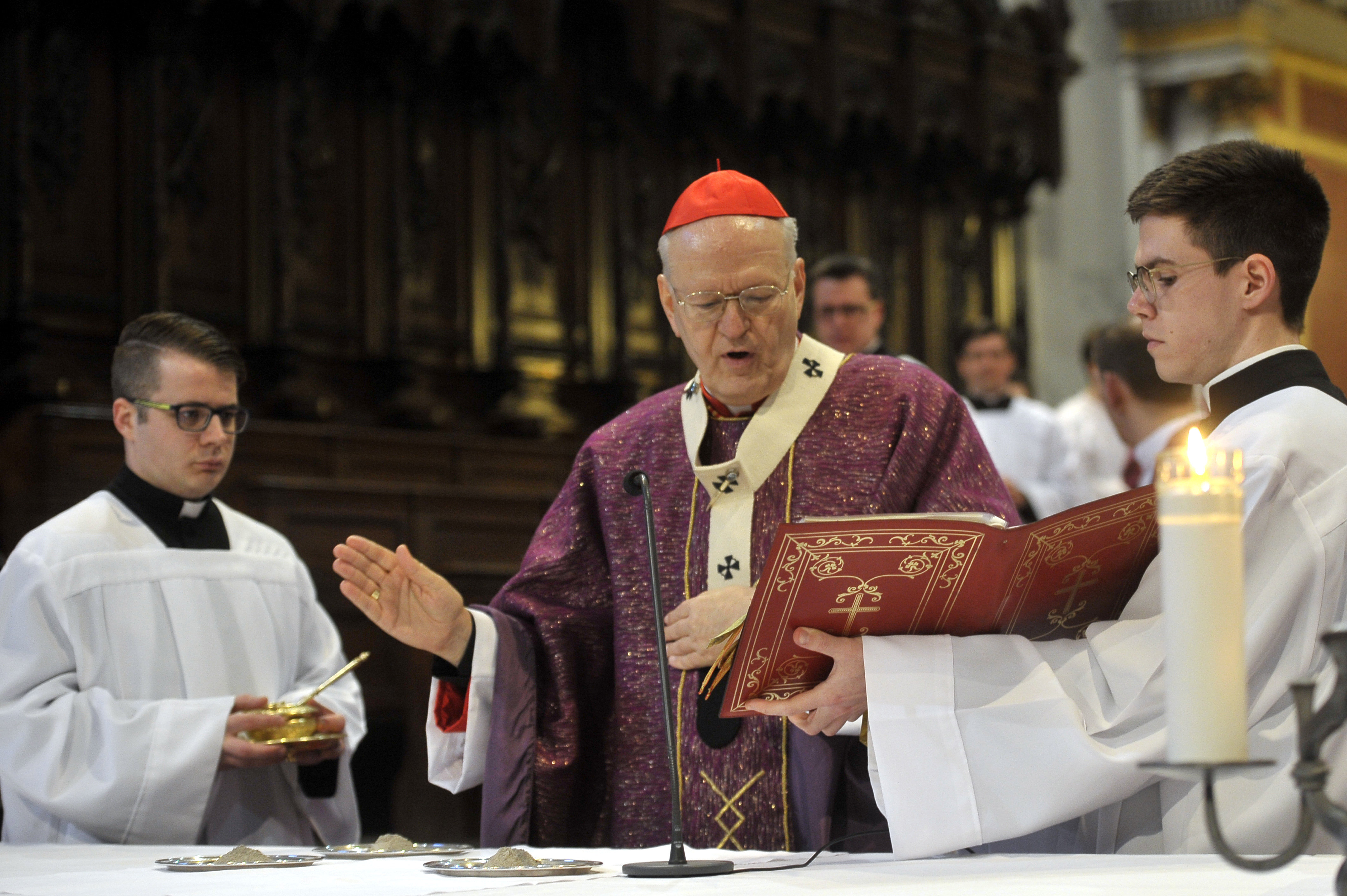 Cardinal Erdő