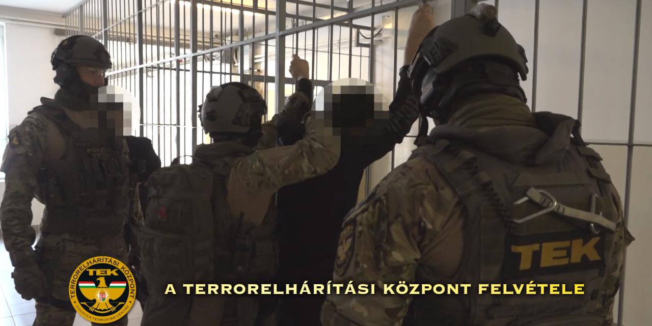 Syrian man arrested on suspicion of terrorism – VIDEO