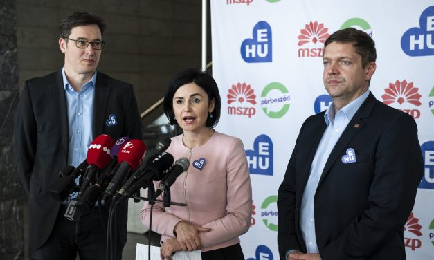 EP elections – Socialists: EP elections crucial