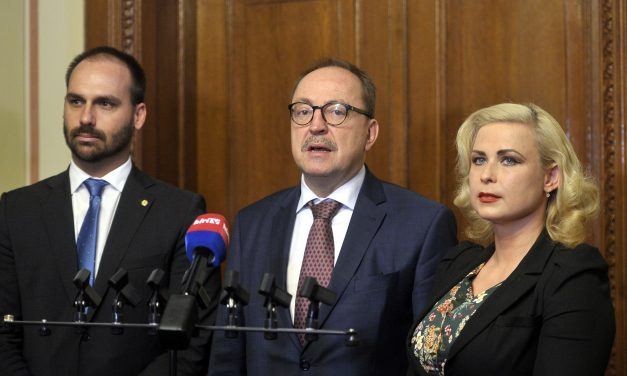 Hungary to build many-sided ties with Brazil