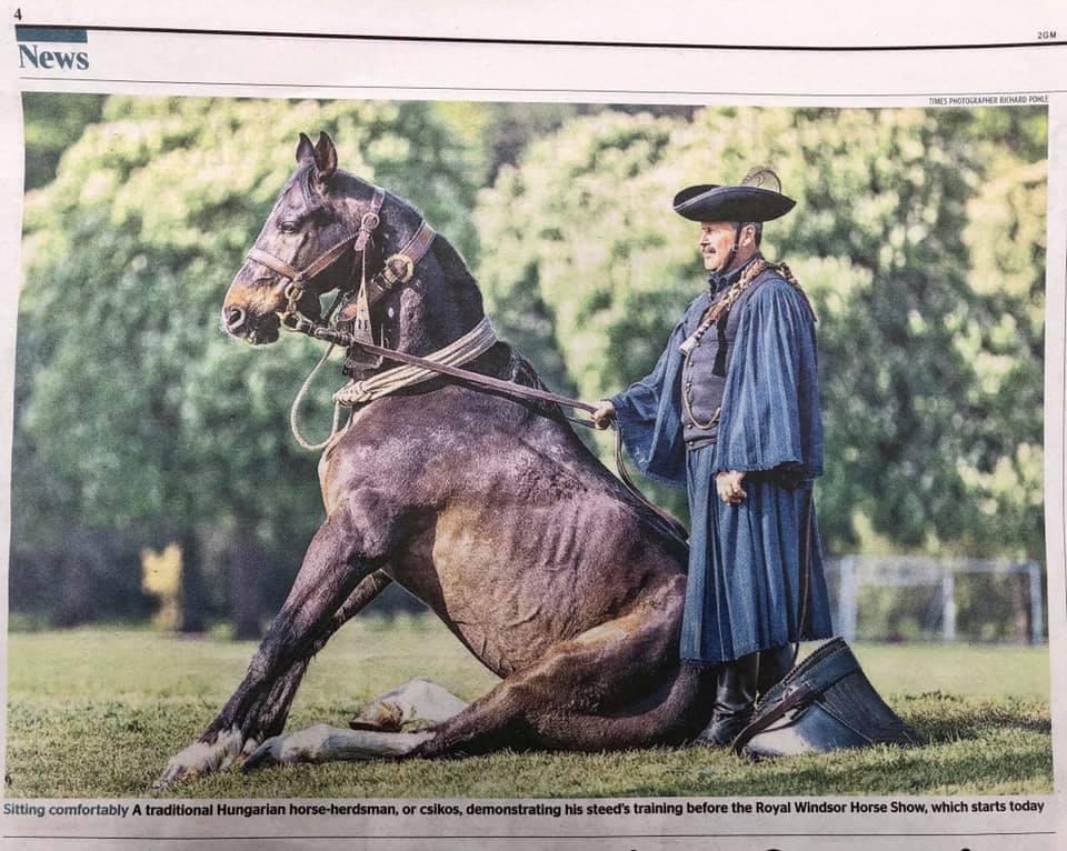 Mátai Ménes, newspaper, horse, Hungary